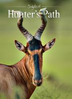 Hunter,Path,Mountain,Africa,Safari,Scotland,red,stags,Wyoming,Mecedonia,partridge,Siberia,roebuck