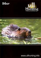 DVD, Biber, Ullhunting, Jagdabenteuer