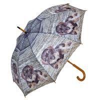 Regenschirm, Motiv Dackel, Dackel