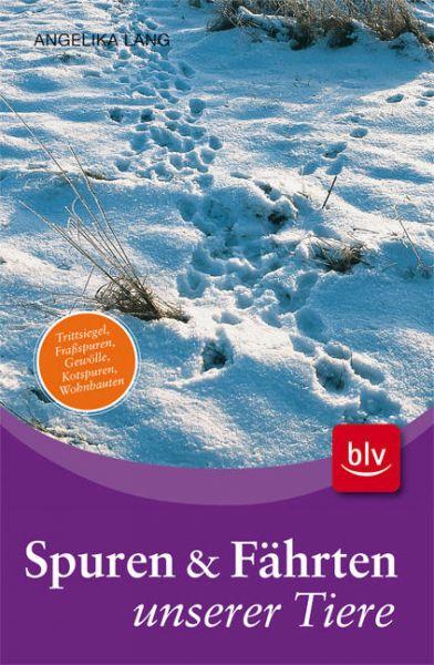 Spuren,Fährten,Gewölle,Wohnhölen,Nester,Vögel,Wald,Schnee,lesen,Tiere,jagen