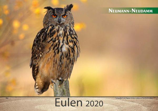 Kalender, Eulen
