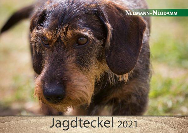 Kalender, Teckel, Jagdteckel, 2021