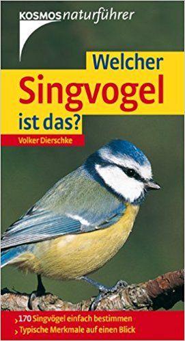 Natur,Singvogel,Vogelkunde,Ornithologie,Vogelbestimmung,Naturlernen,Kinderlernen,Naturerlebnis