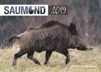Kalender 2019, Saumond, Wandkalender, Kalender, Saumondkalender