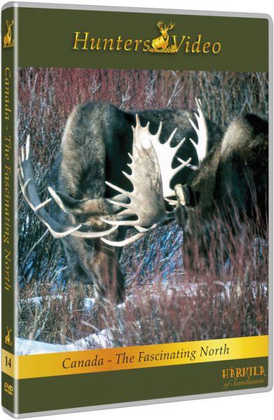 Hunters Video, Kanada-Faszination des Nordens, DVD, Auslandjagd, Kanada, Schwarzbären, Elch, Karibu