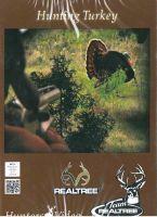 Truthahnjagd, Jagen weltweit, Auslandsjagd, Jagd-DVD