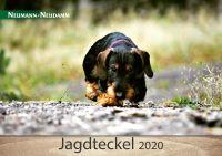 Kalender, Teckel, Jagd