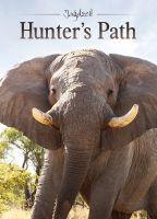 Hunter,Path,Bowhunting,Namibia,Elephants,Zimbabwe,Country,Lions