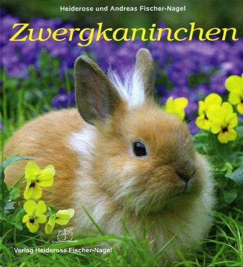 Kaninchen, Zwergkaninchen, Hasen, Kinderbücher, Haustiere