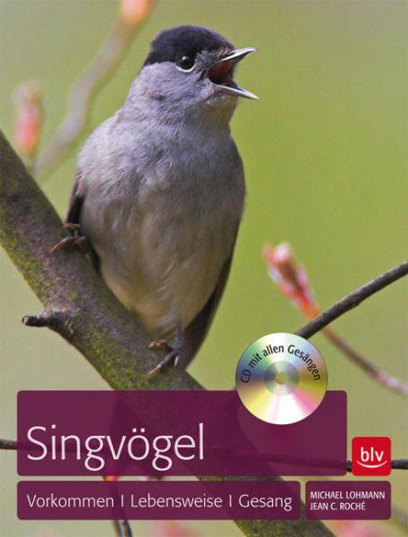 Roché - Singvögel - Vorkommen-Lebensweise-Gesang