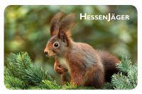 Früh,Stück,Brettchen,Fuchs,JN5492,Hirsch,Bock,Jana,Jagd,Natur,Jungjäger,Mahlzeit,Schnitt,Fest