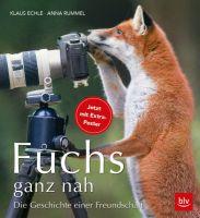 Fuchs, Füchse, Niederwild