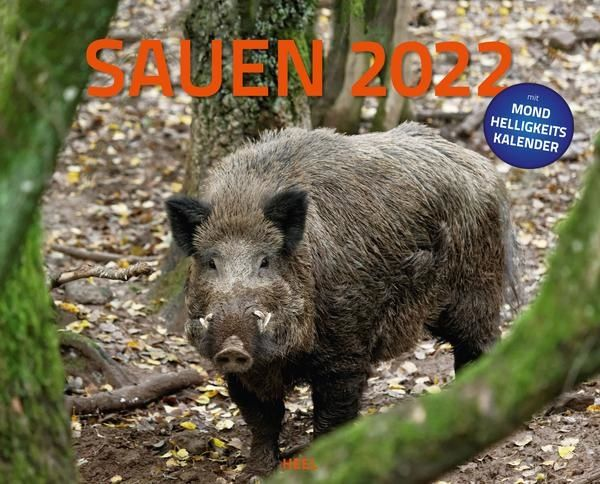 Kalender, Kalender 2022, Sauen