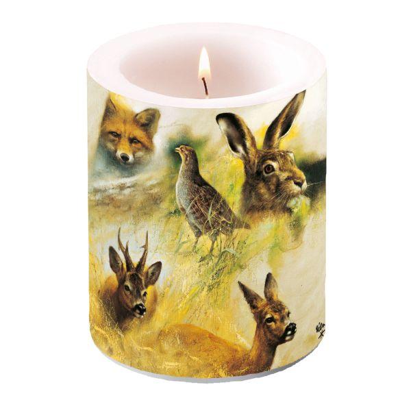 Kerzen, Stumpenkerzen, Rien Poortvliet