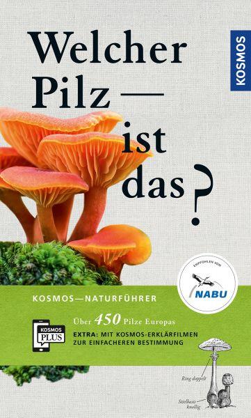 Gminder, Pilze, Pilzbestimmung