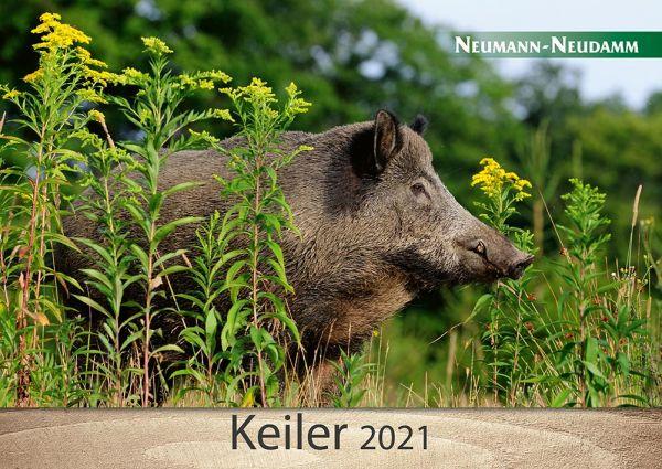 Kalender, Keiler, 2021