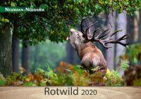 Kalender, Rotwild, 2020