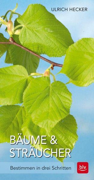 Hecker, Bäume & Sträucher 3er Scheck, Bäume, Naturbücher, Bestimmungsbücher, Blv Verlag