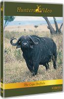 Hunters Video, DVD, Büffeljagd, Kaffernbüffel, Tansania