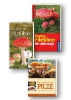 Pilze bestimmen, Pilzführer, Pilze