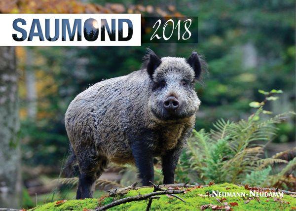 Schwarzwildfieber 8, Jagdfilme, Jagdabenteuer, Jagdkalender, Mo´ndhelligkeit, Saumond
