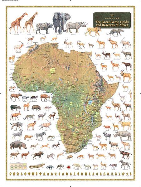 Rownland,Ward,Afrika,