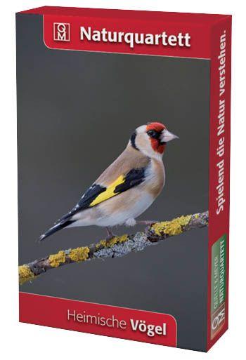 Natur,Quartett,Heimische,Vögel