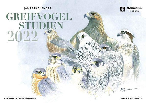 Kalender, Jahreskalender, Greifvogelkalender, Pöppelmann