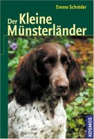 Münsterländer, kleiner Münsterländer