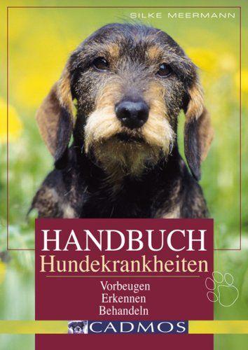 Hundekrankheiten, Jagdhunde