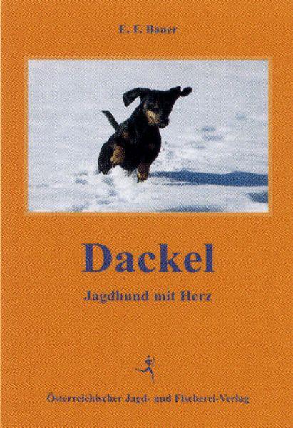Jagdhunde, Dackel, Teckel