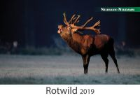 Kalender, Jagdkalender, Rotwild, Rotwildkalender