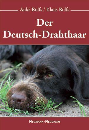 Deutsch Drahthaar, Drahthaar, Jagdhund