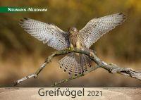 Kalender, Greifvögel, 2021