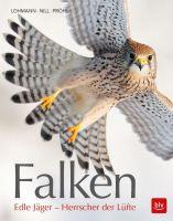 Falknerei, Falken,
