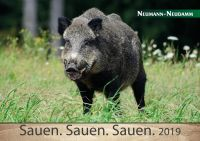 Kalender, Jagdkalender, Sauen, Schwarzwild