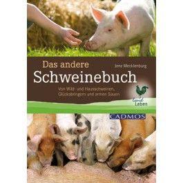 Schweine, Haussschweine, Wildscheine