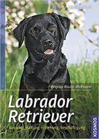 Rauth-Widmann, Labrador Retriever, Jagdhunde