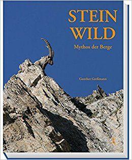 Steinwild,berge,