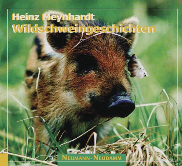 Wildschweingeschichten, Schwarzwild, Wildschwein