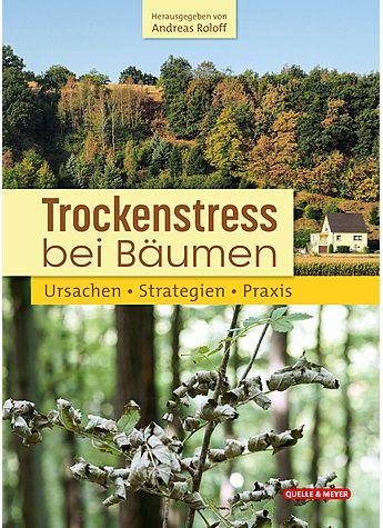 Bäume, Trockenstress, Trockenstress bei Bäumen, Roloff
