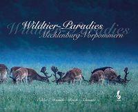 Schwarz, Wildtier-Paradies, Mecklenburg-Vorpommern, Malerei,